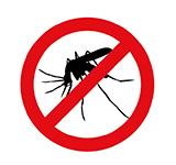 dedetizadora em londrina - dengue