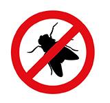dedetizadora em londrina - moscas